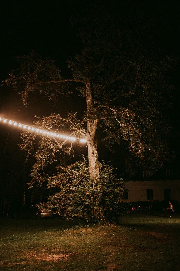 drzewo ze sznurem lampek światełek na weselu