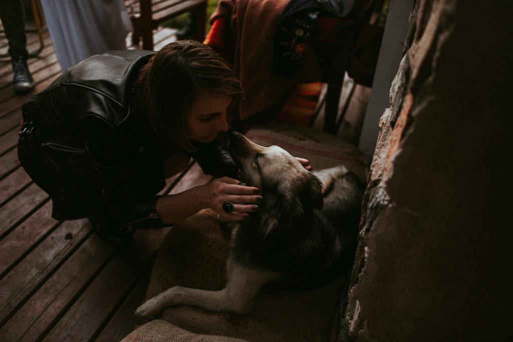 pies na weselu plenerowym nowe kawkowo mazury