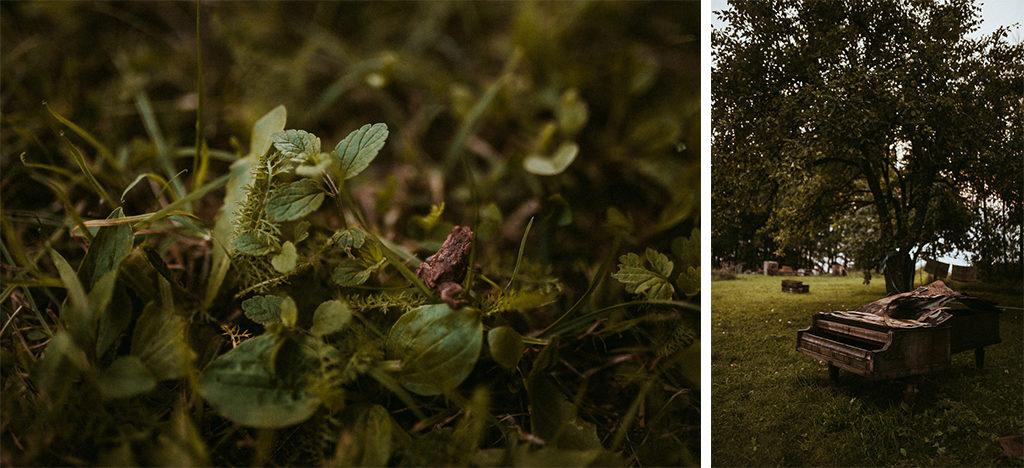 mazury nowe kawkowo stary fortepian żaba w naturze
