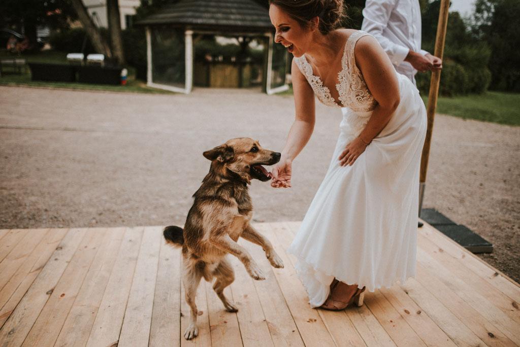 Ślub w Dolinie Cedronu pies na weselu Kraków Leńcze pytlikbak